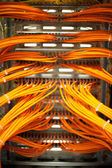 Network cables in a server room — Stock Photo