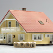 Stock Photo: Model house and heritage