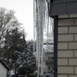 Icicles — Stock Photo #25017011