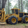 Stock Photo: Forestry industry and forestry