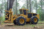 Forestry industry and forestry — Stock Photo