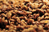 Background, sugared roasted almonds — Stock Photo