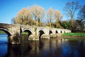 Essex Bridge great Haywood — Stock Photo