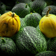 Yellow and green pumpkin — Stock Photo