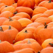 Mounted Pumpkins — Stock Photo