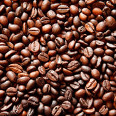 Background with coffee beans — Stock Photo