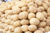 Potatis — Stockfoto