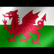 Stock Video: Wales flag