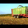 Stock Video: Corn crop biogas plant