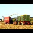Corn crop biogas plant — Stock Video