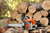 Chainsaw In The Forest — Stock Photo