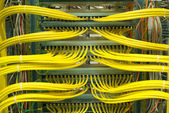 Network LAN patch panel — Stock Photo