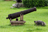 Old Cannon — Stockfoto