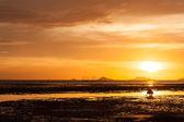 Sunsets ,background — Stock Photo