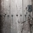 Ancient wooden door — Foto Stock