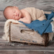 One week old newborn baby boy sleeping on his stomach in a vintage, wooden soda pop crate lined with frayed burlap and denim. — Stock Photo #25591797