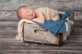 One week old newborn baby boy sleeping on his stomach in a vintage, wooden soda pop crate lined with frayed burlap and denim. — Stock Photo