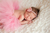 Newborn baby girl wearing a pink crocheted headband and tutu. — Стоковое фото