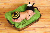 Three week old newborn baby girl wearing a crocheted black and yellow bumblebee costume. — Stock Photo