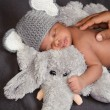 Stock Photo: Newborn baby boy in grey crocheted elephant hat, sleeping on plush elephant