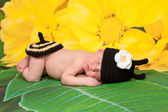 Newborn girl wearing a black and yellow crocheted bumblebee costume sleeping on a yellow flower background. — Stock Photo