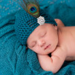 Newborn Baby Girl Wearing a Fancy Teal Hat — Stock Photo