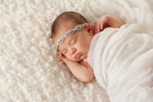 Portrait of an Angelic Newborn Girl — Stock Photo