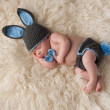 Newborn Baby in Bunny Rabbit Costume — Stock Photo #41075677