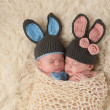 Twin Newborn Babies in Bunny Rabbit Costumes — Stock Photo