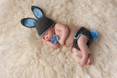 Newborn Baby in Bunny Rabbit Costume — Stock Photo