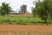 Landbouwgrond weergave met geploegd velden en mule staande in de weide, boerderij en silo's op de achtergrond — Stockfoto