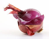 Red onion layers (allium) — Stock Photo