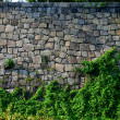 Stock Photo: Japanese city moat walls Tai Pei