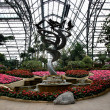 Chongqing Nanshan Botanical Garden greenhouse flowers and plants — Stock Photo
