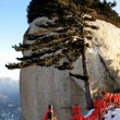 Shaanxi Huashan Dong Feng Feng-ting with the phoenix pine cited — Stock Photo