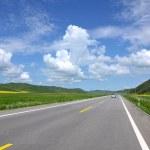 Постер, плакат: Inner Mongolia grassland Keerqin highway