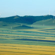 Inner Mongolia Hulunbeier Ergun Root River wetland edges canola flower fields — Stock Photo