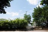 """Chongqing's first private garden, Zhao Xi Zeng Qing Shi Yu book """"Eling"""" monument — Stock Photo"""