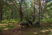"Daxinganling mohe, heilongjiang provincia pueblo ártico sandbar ártico bosque ""lobos"" escultura — Foto de Stock"