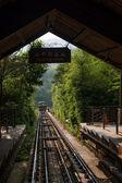 广东省深圳市东站大梅沙丛林电车线 1 — 图库照片