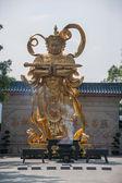 Shenzhen City, Guangdong Province, East Dameisha Huaxing Temple Bodhisattva Skanda — Stock Photo