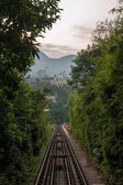 Shenzhen City, Guangdong Province, East Dameisha tea valley forest train railway — Stok fotoğraf