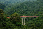 Shenzhen City, Guangdong Province, East Dameisha tea valley curved extension of the forests in the mountains train railway — Stock Photo
