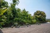 Shenzhen City, Guangdong Province, East Dameisha Tea Stream Valley Rainforest — Foto de Stock