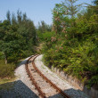 Shenzhen City, Guangdong Province, East Dameisha tea valley forest train railway — Stock Photo