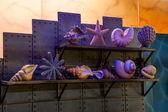 Ocean park hong kong arte parede — Foto Stock