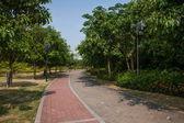 Zhuhai City, Guangdong Province, Middle Lover Wild Beaver Island Sea language seaside road — Stock Photo