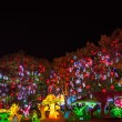 "Stock Photo: Nineteenth Zigong International Dinosaur Lantern Festival ""auspicious Year of China"" main area"