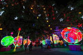 "Nineteenth Zigong International Dinosaur Lantern Festival ""auspicious Year of China"" the main area — Stock Photo"