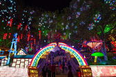 "Nineteenth Zigong International Dinosaur Lantern Festival ""auspicious Year of China"" the main area — Stock Photo"